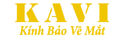 Kính Bảo Vệ Mắt Khi Dùng Máy Tính Hàng Đầu Việt Nam